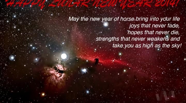 Happy Lunar New Year 2014!