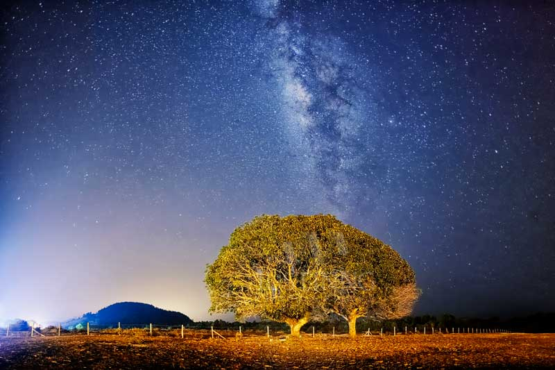 140627-Milky-Way-above-Lonely-Tree