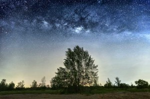 140625-Naked-Eye-Milky-Way-Above-Trees
