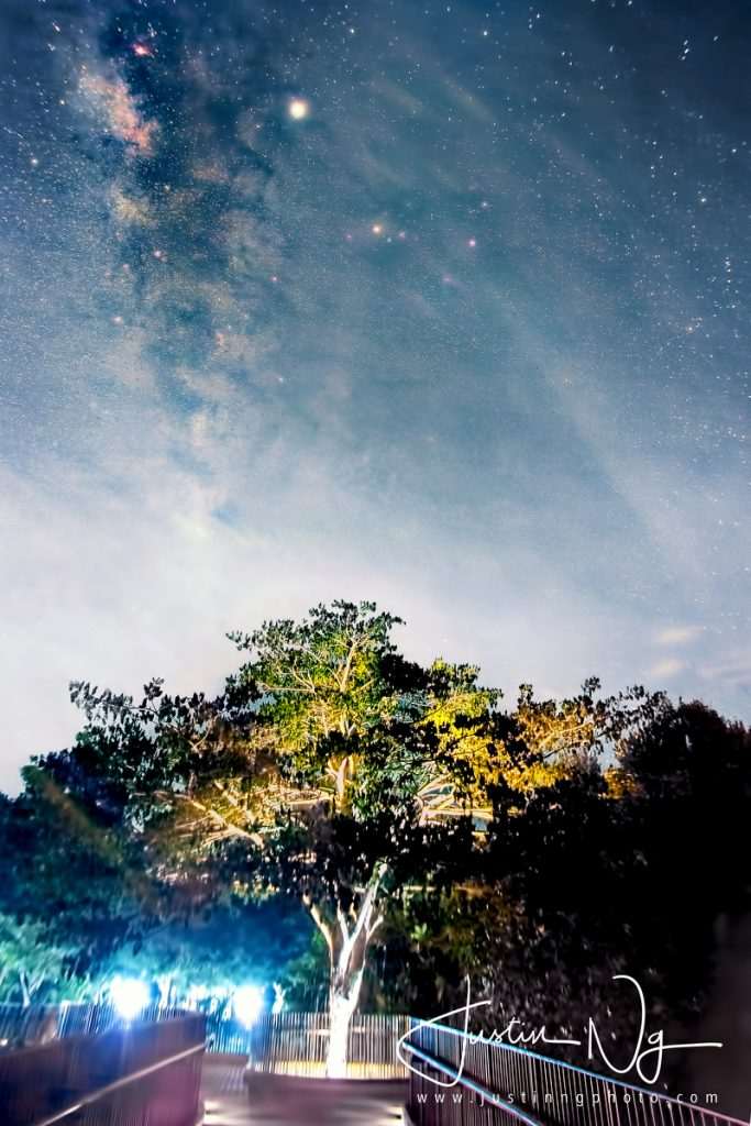 Springleaf Nature Park Milky Way on 11 June 2019